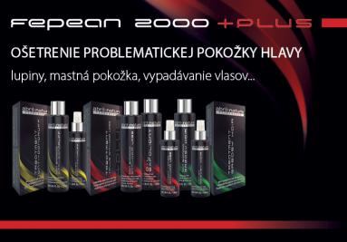 FEPEAN 2000